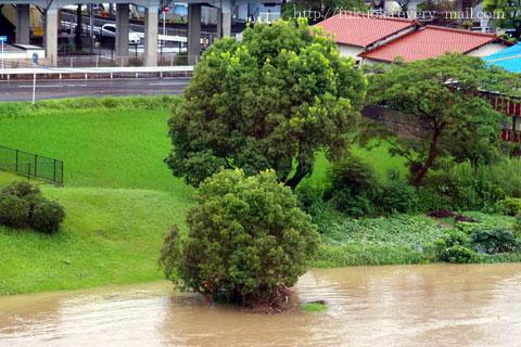 福岡の豪雨レポート 4  平成21年7月中国・九州北部豪雨